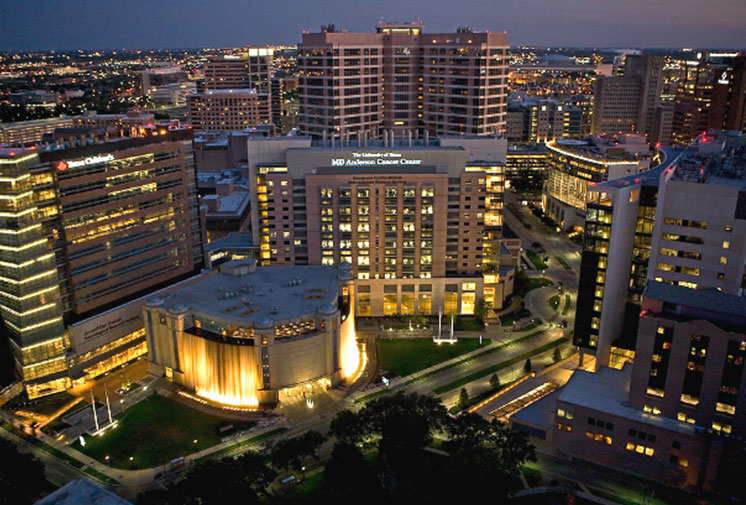 Texas Medical Center photo show image